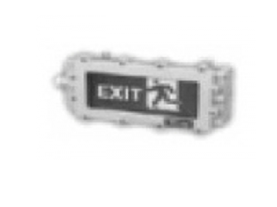 Đèn thoát hiểm chống nổ IP54 AC AEEP/2