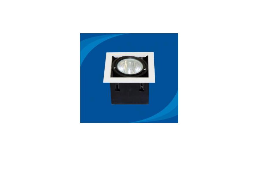 Đèn rọi âm trần Paragon - OLK170G12 (DLK1202)