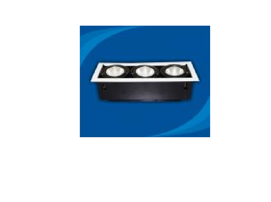 Đèn rọi âm trần Paragon - OLK370G12(DLK1206)