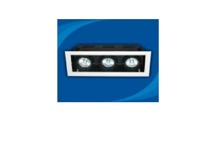 Đèn rọi âm trần bóng Halogen Paragon - OLA350MR16(DLK1186)
