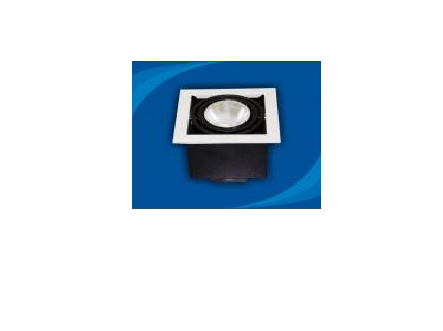 Đèn rọi âm trần bóng PAR30 - OLL170P30 (DLK1203)