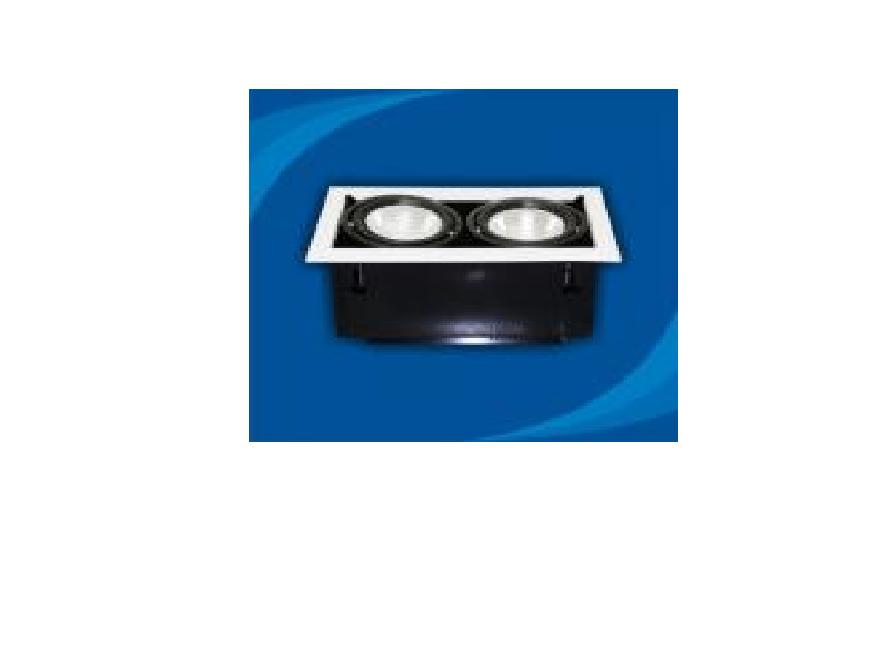 Đèn rọi âm trần bóng PAR30 - OLL270P30 (DLK1205)