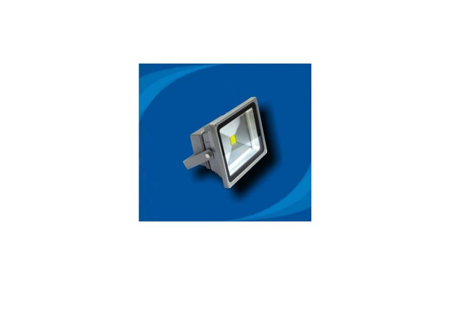 Đèn pha không thấm nước bóng LED - POLH3065