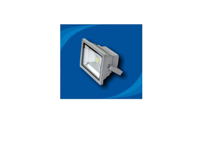 Đèn pha không thấm nước bóng LED - POLH2065