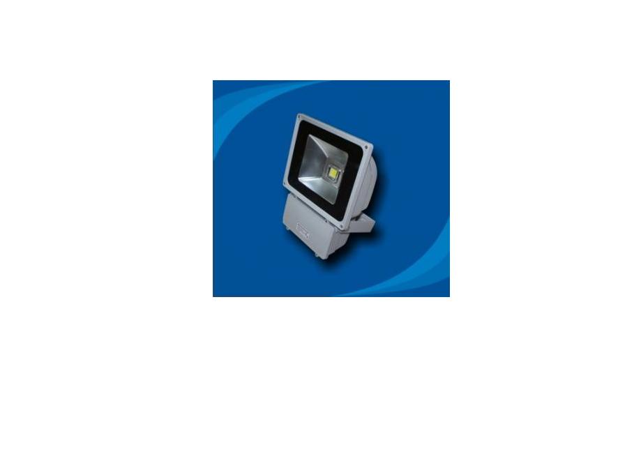 Đèn pha chống thấm nước bóng LED - POLH8065