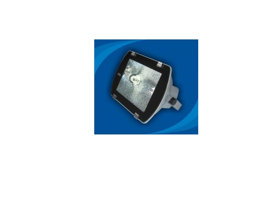 Đèn pha chống thấm nước - POLB15065 (DPP 004)